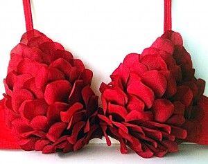red-rose-diy-bra-for-v-day-brides__full-300x237_preview